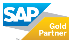 teka-sap-partner